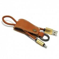 USB data kabal za iPhone Pendant - zlatna